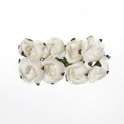 Fleurs (8) blanche...